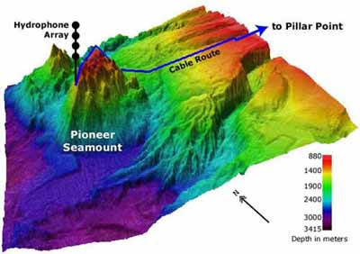 Seamount summit near Guam with red and green algae, soft corals and topical fish. NOAA